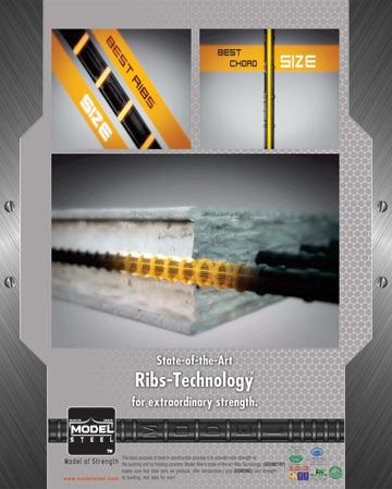Theme Ribs Technology